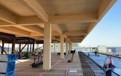 How Mass Timber is Impacting Commercial Construction